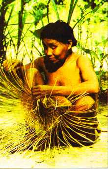 Indien Yanomami.