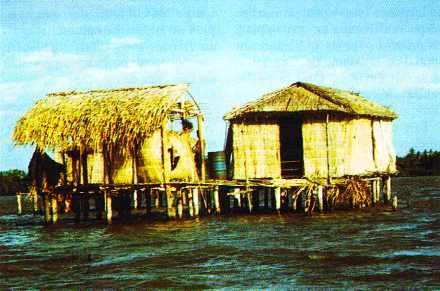 maisons sur pilotis de la lagune de Sinamaica