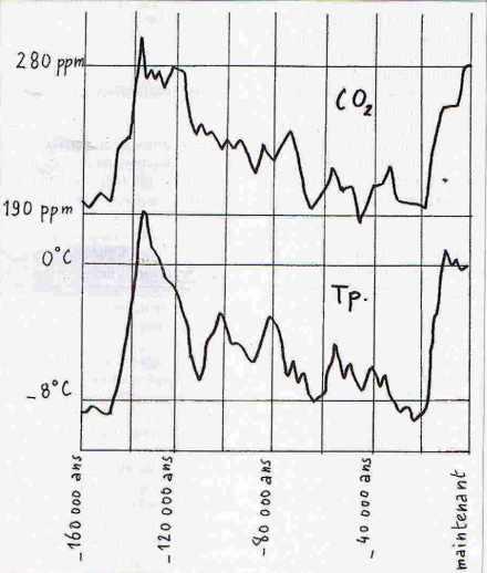 Variation de la concentration en CO2 au cours du temps