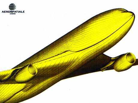 Calcul parallèle : lignes de frottement obtenues par calcul Navier-Stokes sur avion Airbus