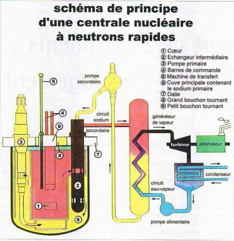 Schéma d'une centrale nucléaire à neutrons rapides