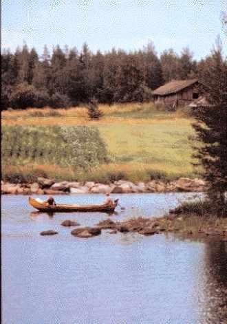 Région lacustre de Saimaa.