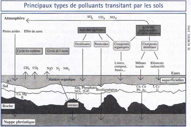 Principaux types de polluants transitant par les sols