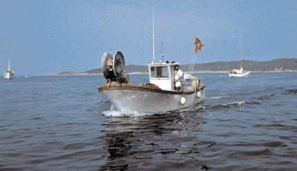 Un pêcheur professionnel dans les eaux du Parc national de Port-Cros.