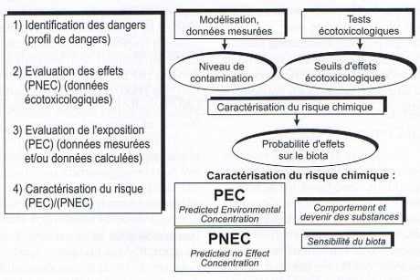 Principes directeurs de l'analyse du risque chimique environnemental