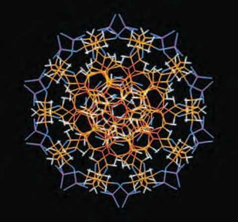 L'ADN, molécule support de l'hérédité