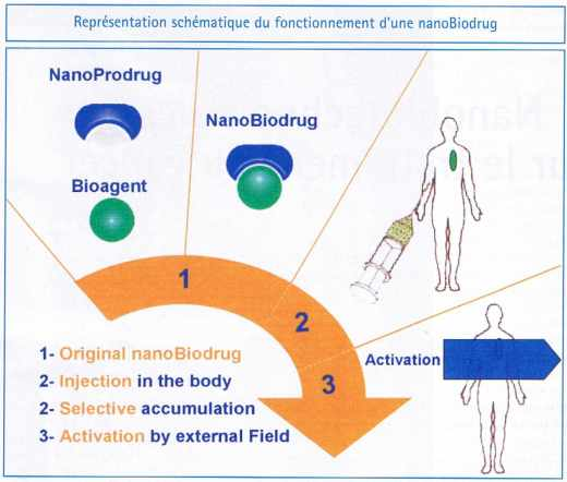 Représentation schématique du fonctionnement d'une nanoBiodrug