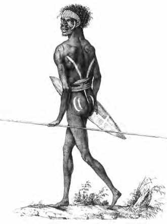 Guerrier aborigène des environs de Port Jackson, signé Nicolas-Martin Petit. Muséum d'histoire naturelle du Havre.