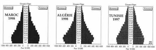 Les pyramides des âges du Maghreb pendant les années 1990