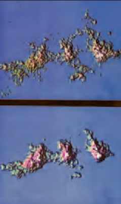 Image fractale, par Benoît Mandelbrot
