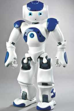 Un compagnon artificiel : NAO