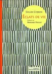 Couverture du livre : Éclats de vie