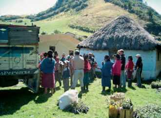 Projet Zorrino 2005, déchargement des arbres