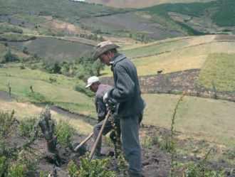 Projet Zorrino 2005, les indiens quechuas