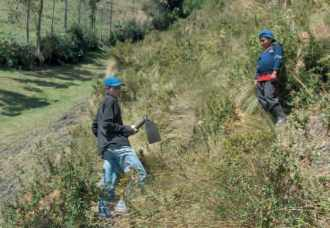 Projet ZORRINO 2005, la plantation des arbres
