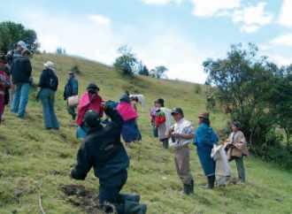 Projet ZORRINO 2005, le travail en minga