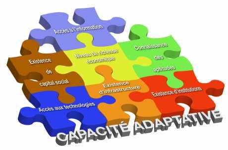 Exemples d'éléments constituant la capacité adaptative d'un système.