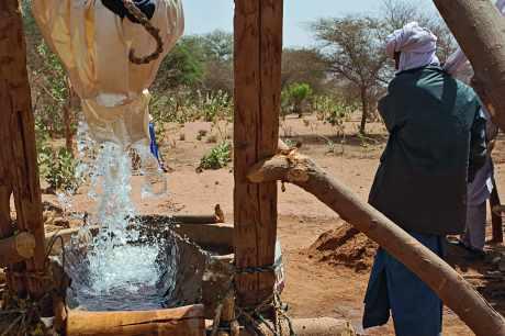 Distribution d'eau au Niger