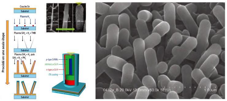 Formation de nanofils de silicium