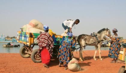 Chariot au Mali