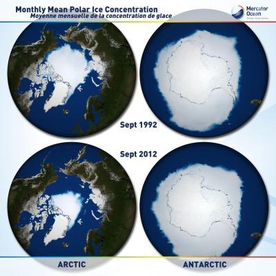 Modèle de glace de mer