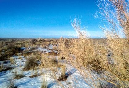 La steppe en hiver au Kazakhstan