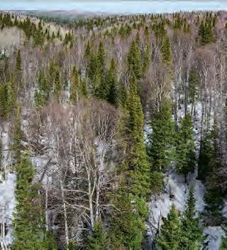 Région de permafrost