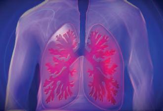 Modélisation du poumon pour traiter les insuffisances respiratoires