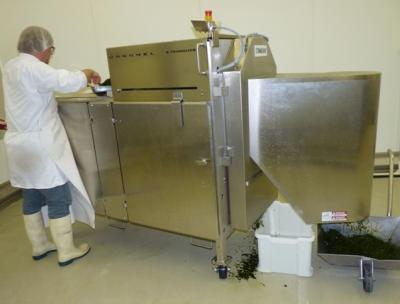Préparation de juliennes d'algues