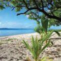À Wallis-et-Futuna