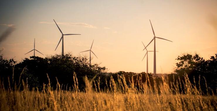 Centrale éolienne d'Areia Branca (90 MW) - Brésil.