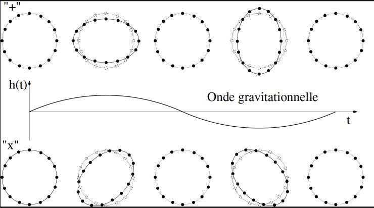 Propagation d'une onde gravitationnelle