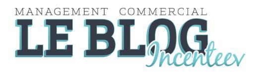 Le blog Incenteev