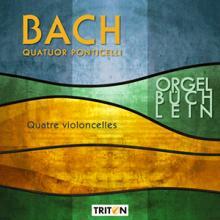 CD Bach Quatuor Ponticelli violoncelles