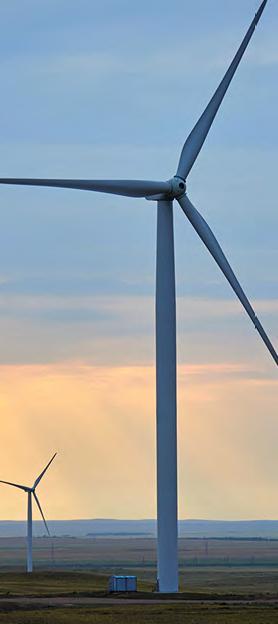 Des métaux rares entrent dans la fabrication des éoliennes.