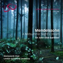 DVD Le sonde d'une nuit d'été, Mendelssohn