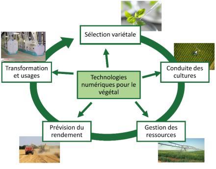 Les technologies numériques au service de la filière agroalimentaire