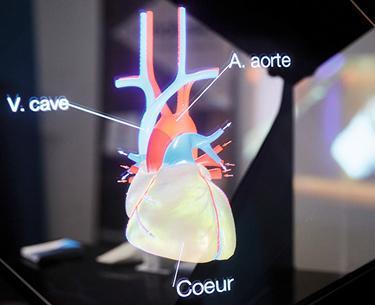Cœur vu en réalité virtuelle