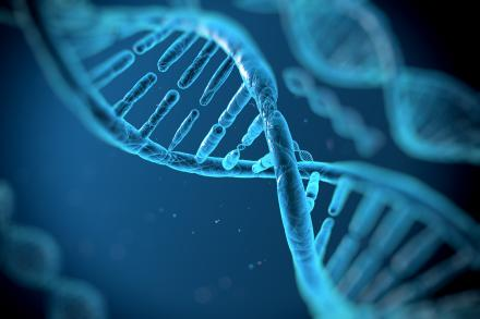 Morceau d'ADN