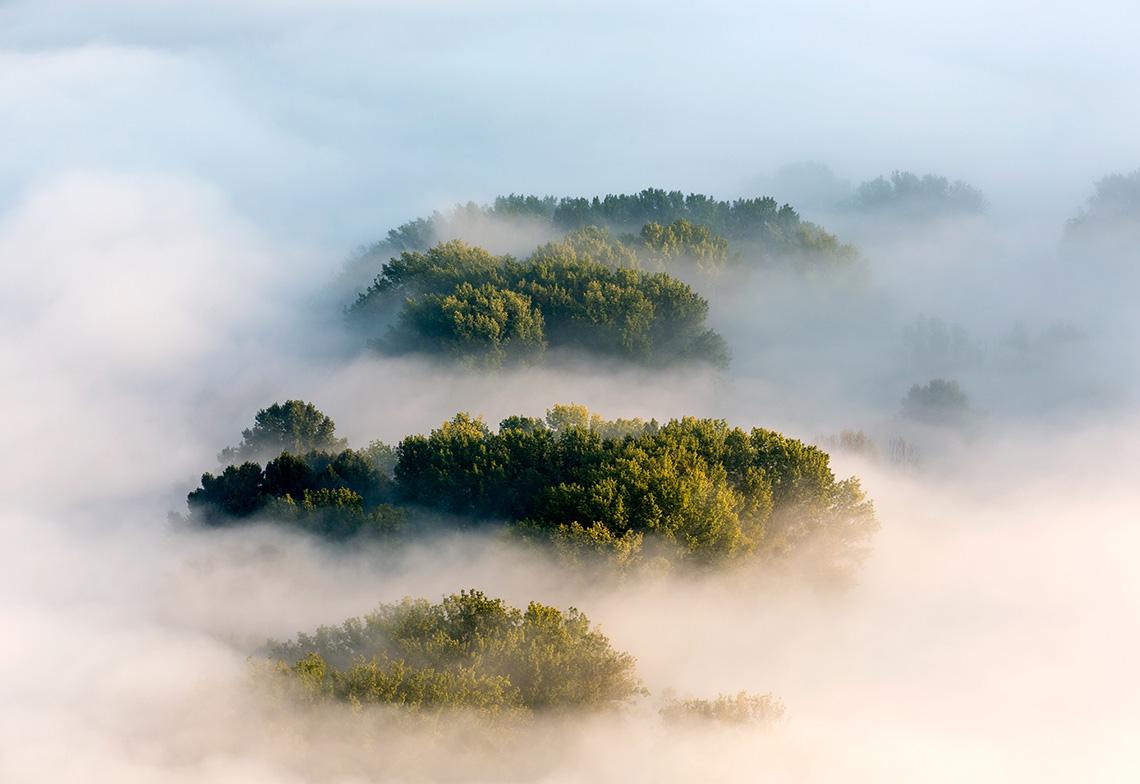 Etymologie du mot environnement