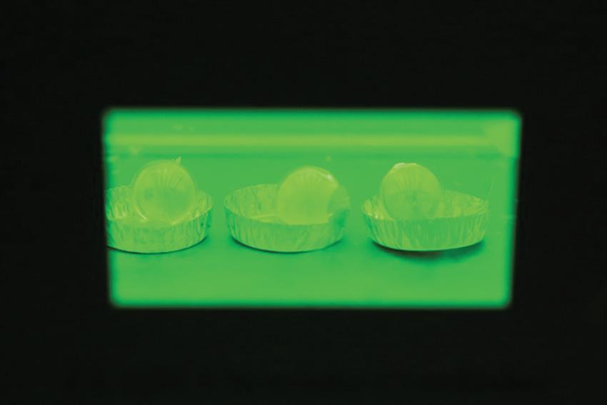 Mécanique des solides : polymérisation de billes acrylates