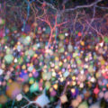Cerveau en couleurs selon Emmanuel Beaurepaire