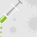 modèle épidémiologique Covid 19 vaccin, variants